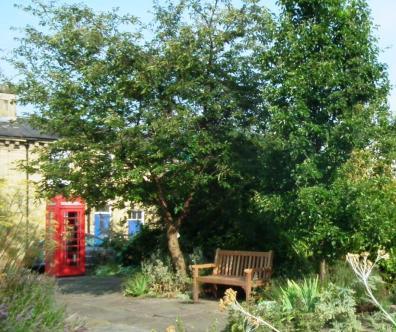 Wash House Garden